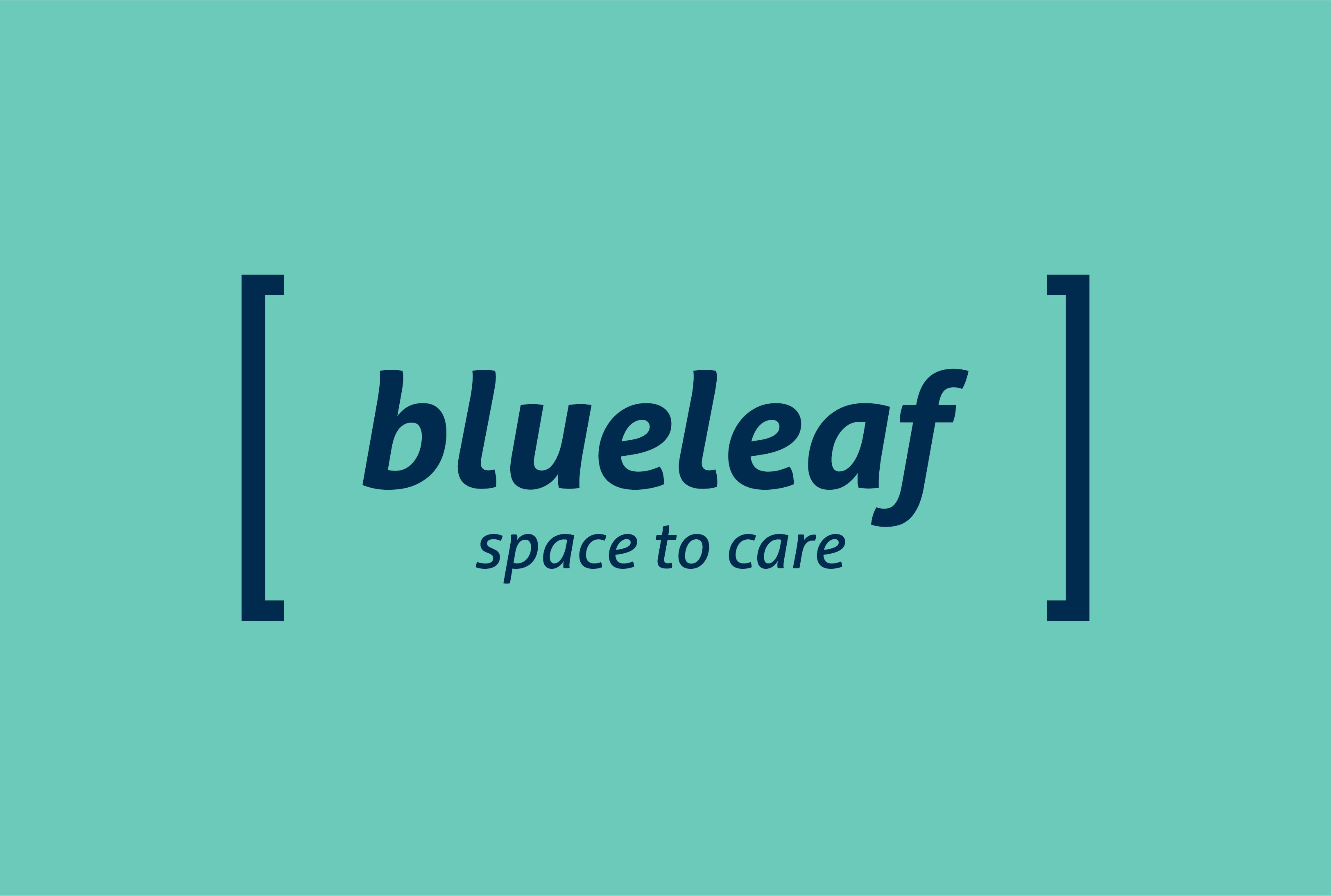 BLUELEAF_Cover_1560x1050pxb